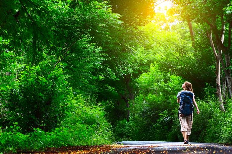 知っておきたい森林破壊の基礎知識。世界の森林破壊と日本の森林問題について