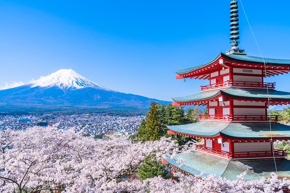 富士山と桜の日本の景色の壁紙