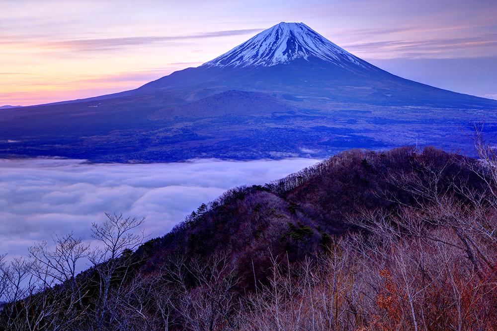 精進湖パノラマ台から黎明の富士山