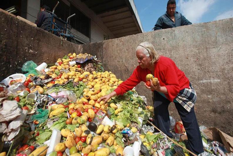 メキシコでは年間1,000万トン以上、食料廃棄物が増えています。