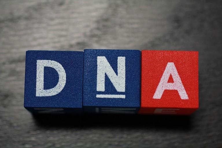 そういえば、遺伝子って何?私たちを作る小さな巨人「遺伝子」の正体