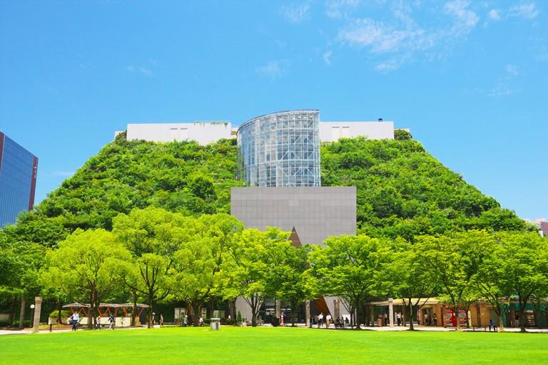 オフィス建物を緑化する効果とは?イラストにまとめました