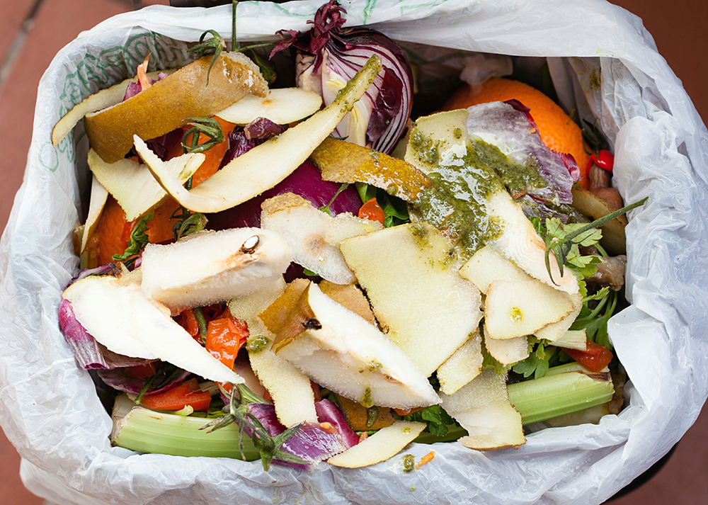 Organic waste for compost with vegetables, fruits and varied food.