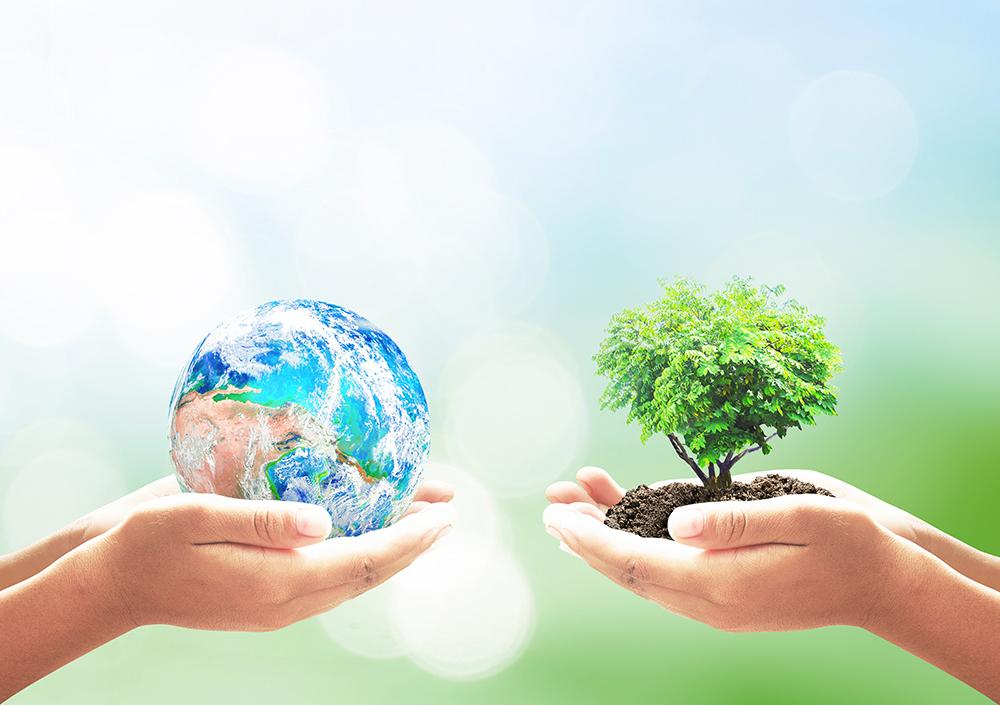 あの資源ごみは何に生まれ変わる?定番資源ごみ10 つのリサイクル品