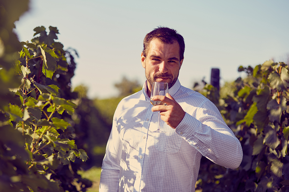 温暖化でワインの味が変わる?地球温暖化とワインの関係