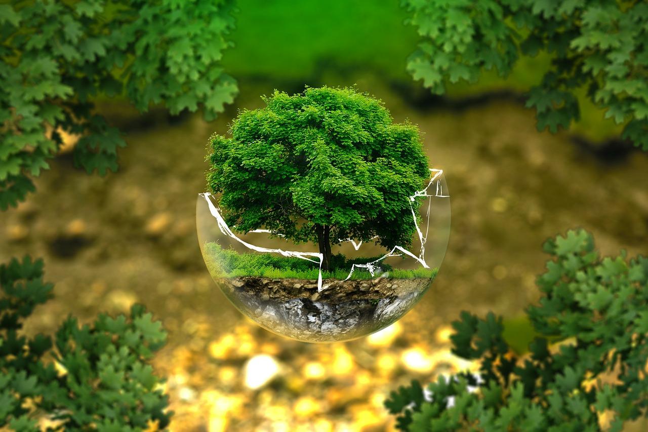 環境に興味のある学生必見!環境系就職サービス5選
